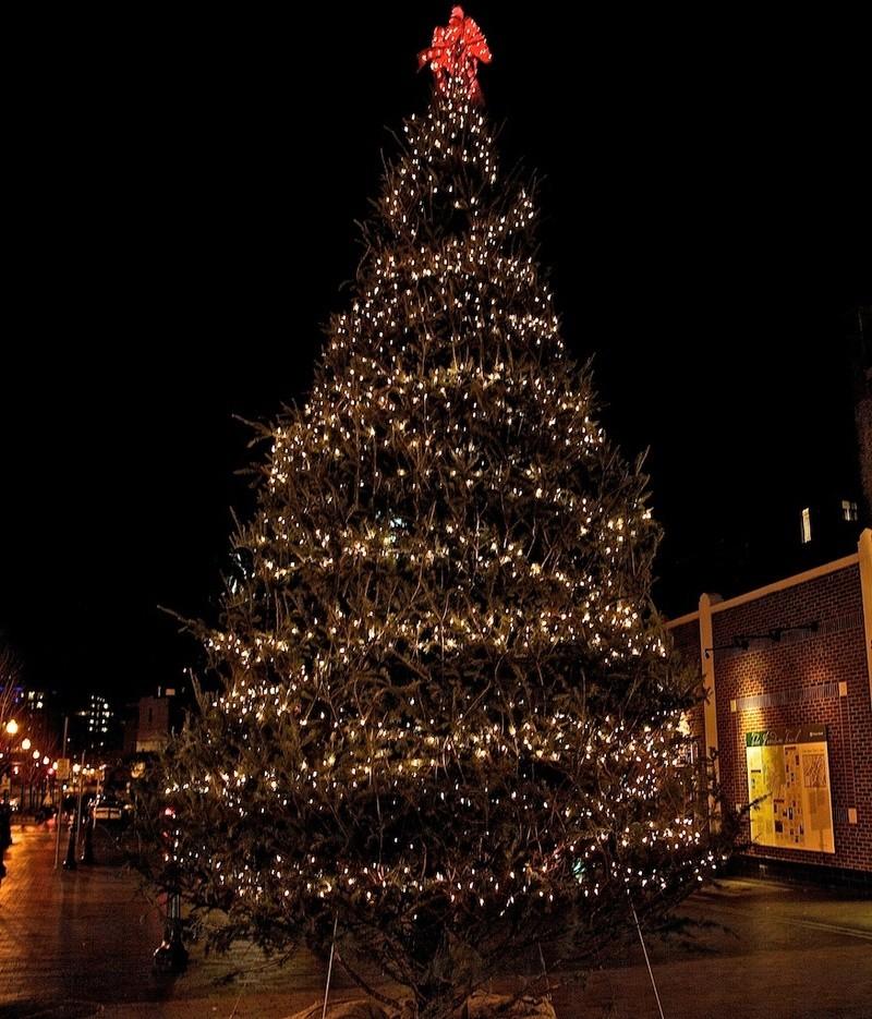 Les illuminations de Noël pour les fêtes 2.015   2.016 ! - Page 14 Xmas-t10