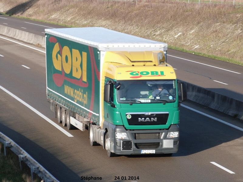 Gobi (Zielona Gora) P1180541