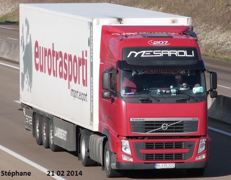 Mesaroli (Trevenzuolo) P1190826