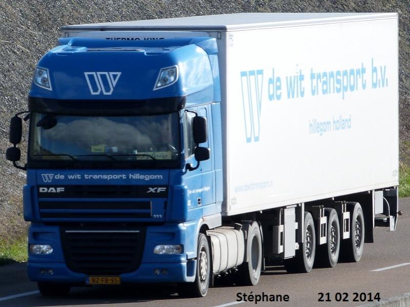 De Wit Transport (Hillegom) P1190843