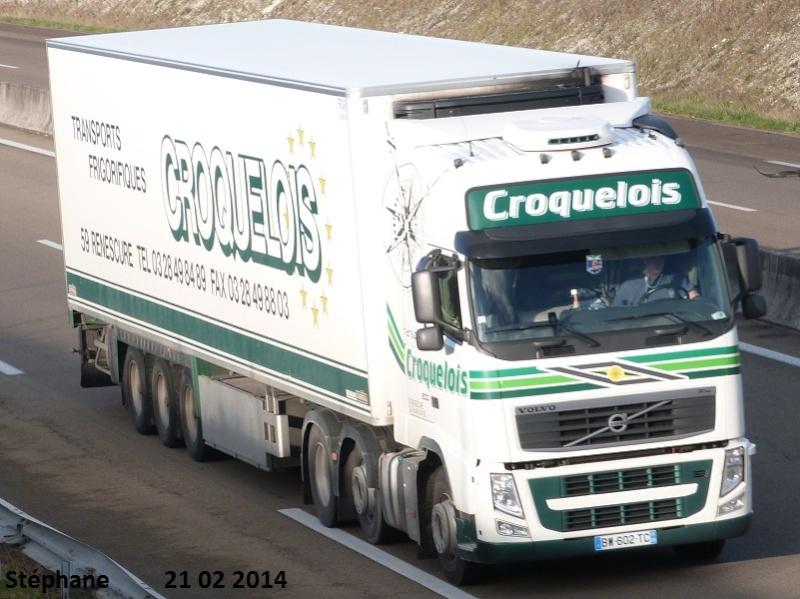 Croquelois (Renescure 59) - Page 2 P1190947