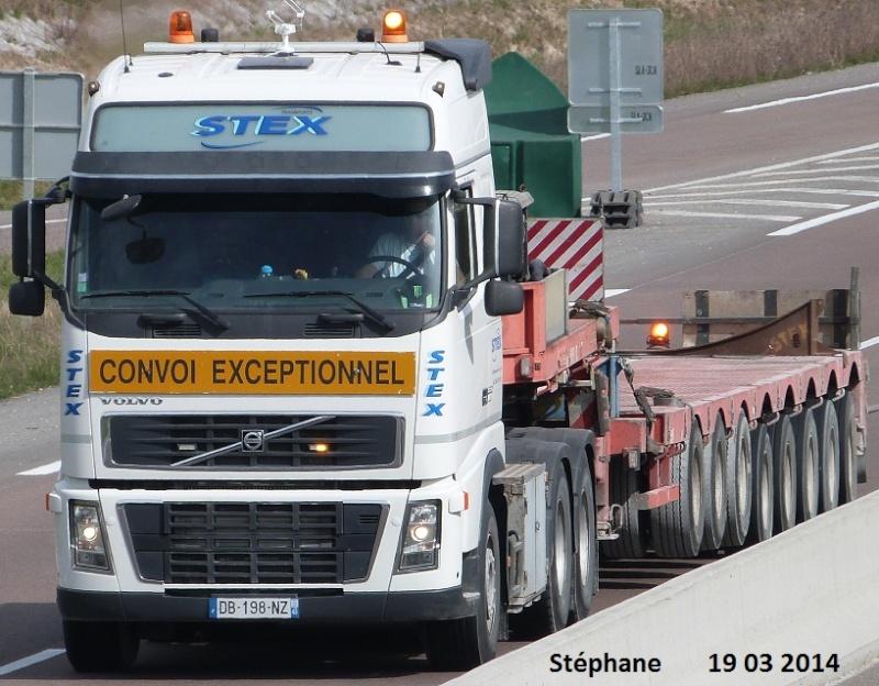 Stex (Chateauneuf sur Loire, 45) P1220166