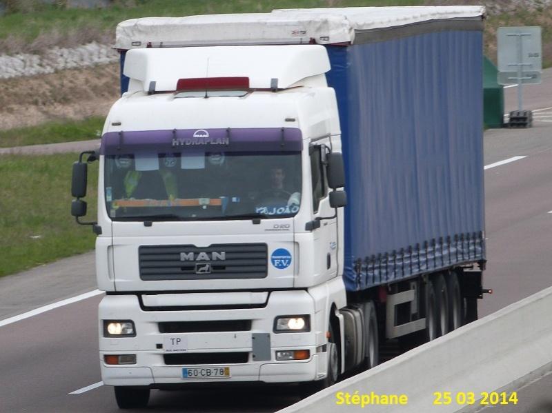FV Transportes (Fernando Viegas) (Ribamondego Gouveia) P1220486