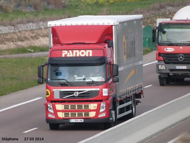 Panon (Groupe Alainé)(Semoy, 45) - Page 2 P1220757