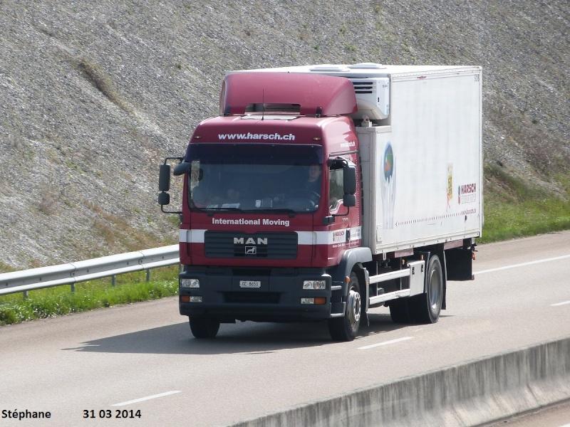 Harsch (Carouge) P1220942