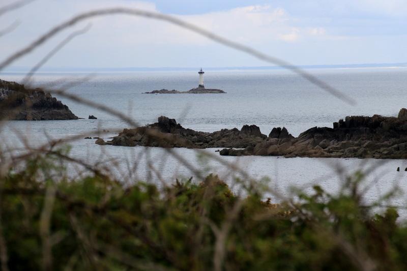 Pointe du Grouin- Le Herpin  Pointe10