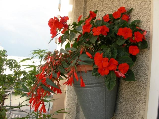 ART DU JARDIN jardins d'exception, fleurs d'exception 1_1_1100