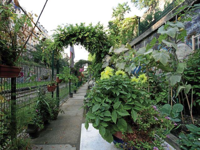 ART DU JARDIN jardins d'exception, fleurs d'exception 1_1_1403