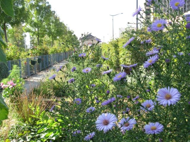 ART DU JARDIN jardins d'exception, fleurs d'exception 1_1_1408