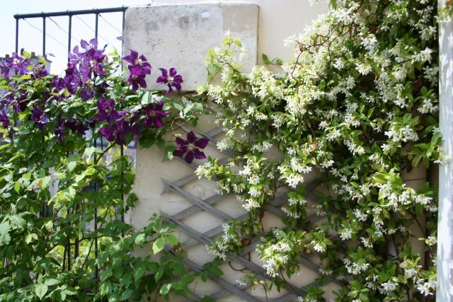 ART DU JARDIN jardins d'exception, fleurs d'exception 1_1_1_97