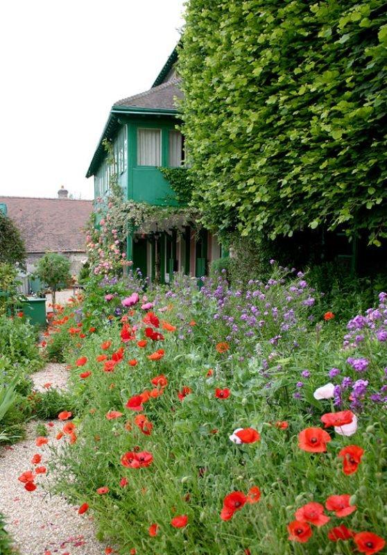 ART DU JARDIN jardins d'exception, fleurs d'exception - Page 2 1_1_2564