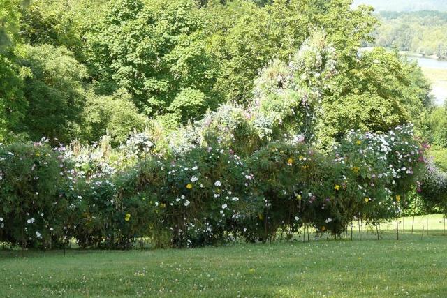 ART DU JARDIN jardins d'exception, fleurs d'exception - Page 2 1_1_2608