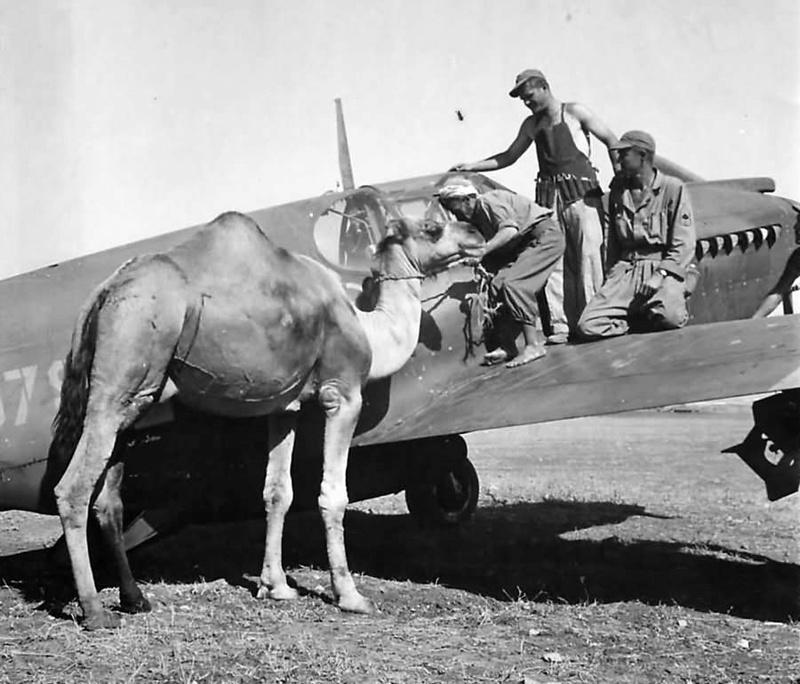 UN MIRACLE EN 1943 PENDANT LA SECONDE GUERRE MONDIALE Civili10