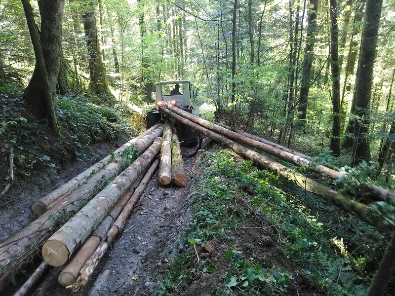 Montage forestier d'un MB Trac 800 - Page 5 Img_2015