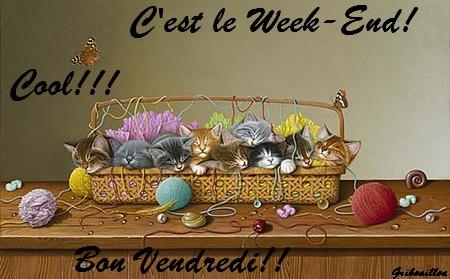 """""""Bonjour / Bonsoir"""" !!! - Page 5 Week_e10"""