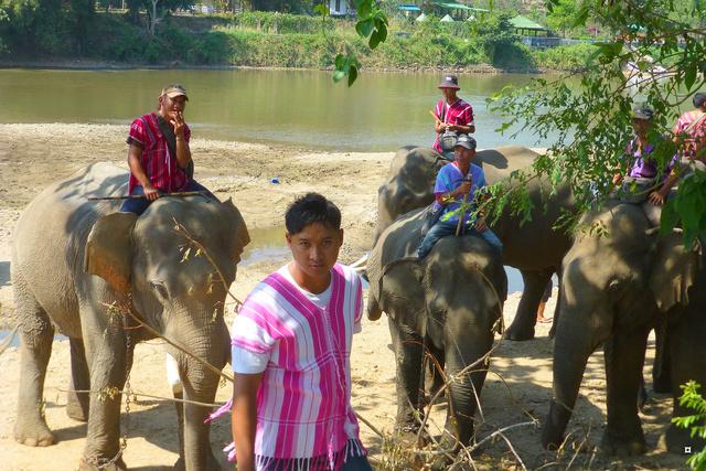 fête des éléphants P1130911