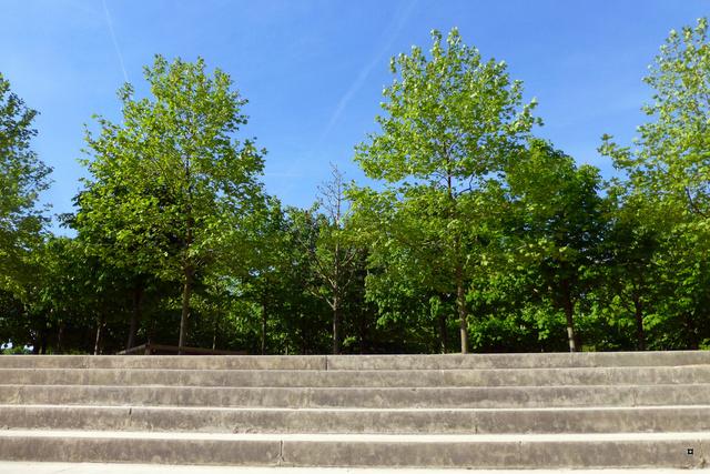 Choses vues dans le jardin du Luxembourg, à Paris - Page 5 P1140022