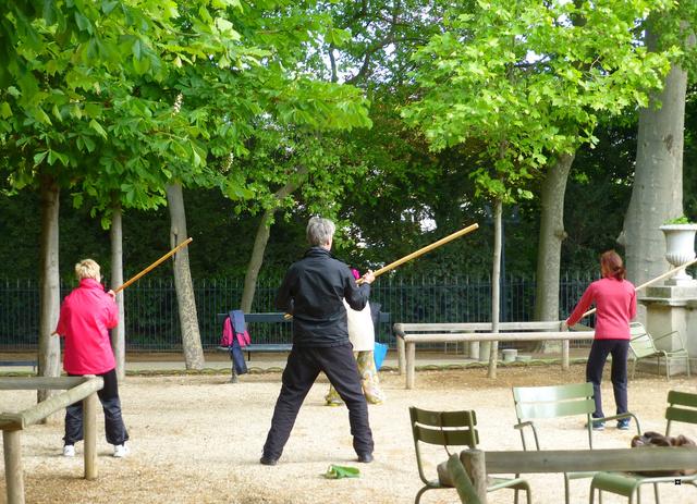 Choses vues dans le jardin du Luxembourg, à Paris - Page 5 P1140024