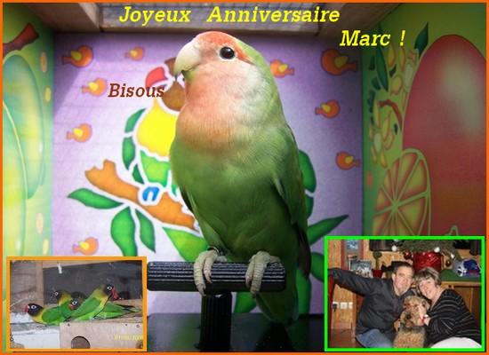 Joyeux Anniversaire Marc ! 8-marc10