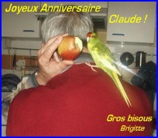 Bon Anniversaire, Claude (kiwi) Claude11