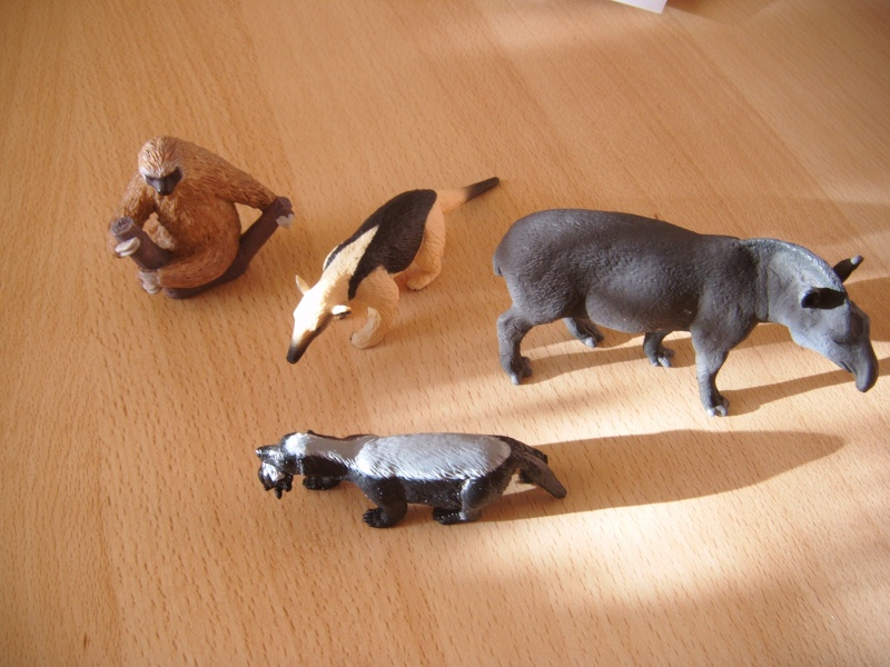 The Mojö animals in my zoo Dscf0019