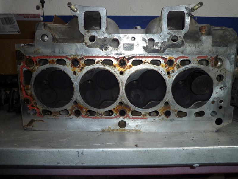 Ma GT Tonic P1040713