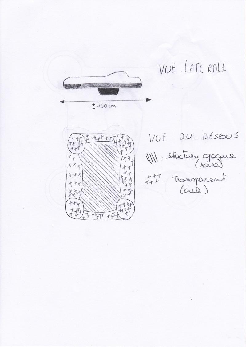 2014: le 19/03 à 17.30 h - Ovni rectangulaire volant - Bourseigne-Neuve -  Img_0011