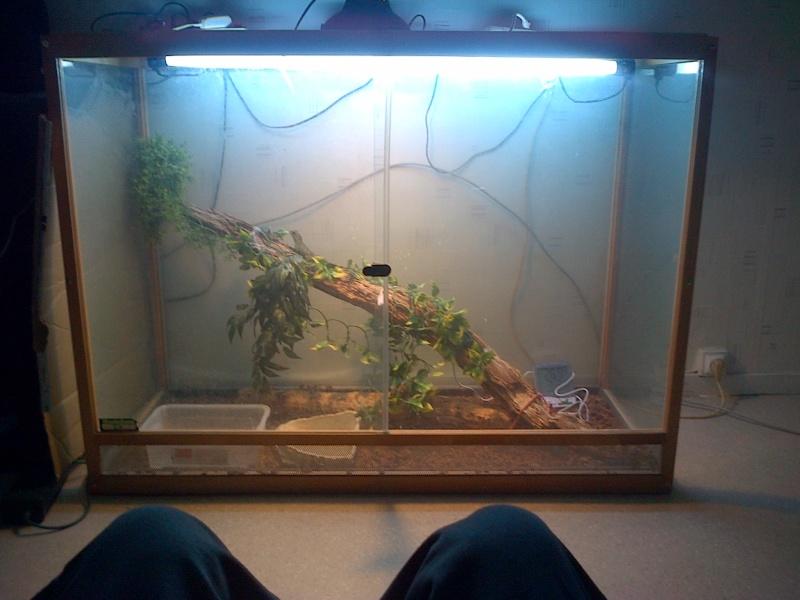 mon dragon d'eau  Physi210