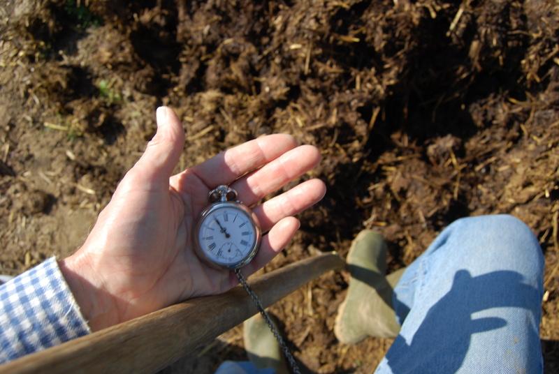 Votre montre de poche du moment ! - Page 10 Dsc_0051