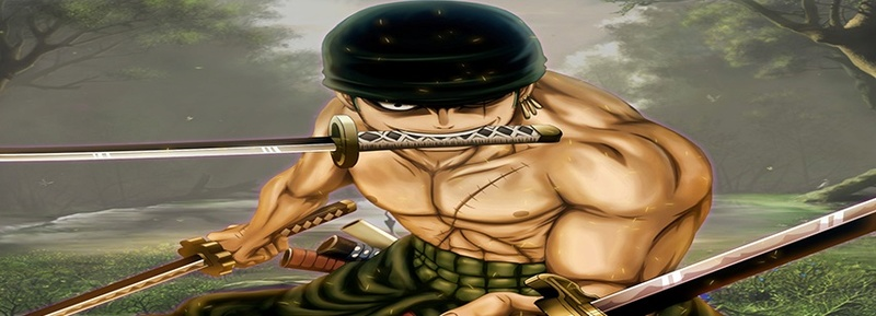 Je propose.. Ping-pong. Zoro-f12