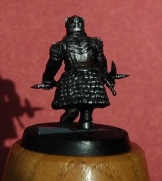 Galerie d'Aerendel [Nains, Khazad, Gondor, Elfes...] Dsc_6114