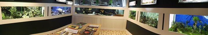 l'Aquario-Club nord-Meusien ouvre ses portes le Samedi 15 avril  17974710