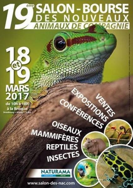 19ème Salon des NAC le 18 et 19 mars 2017 à La Broque (67) Broque10