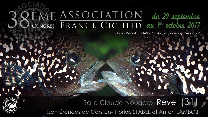 38ème Congrès AFC - Revel(31) du 29 septembre au 1er octobre 2017 Congry11