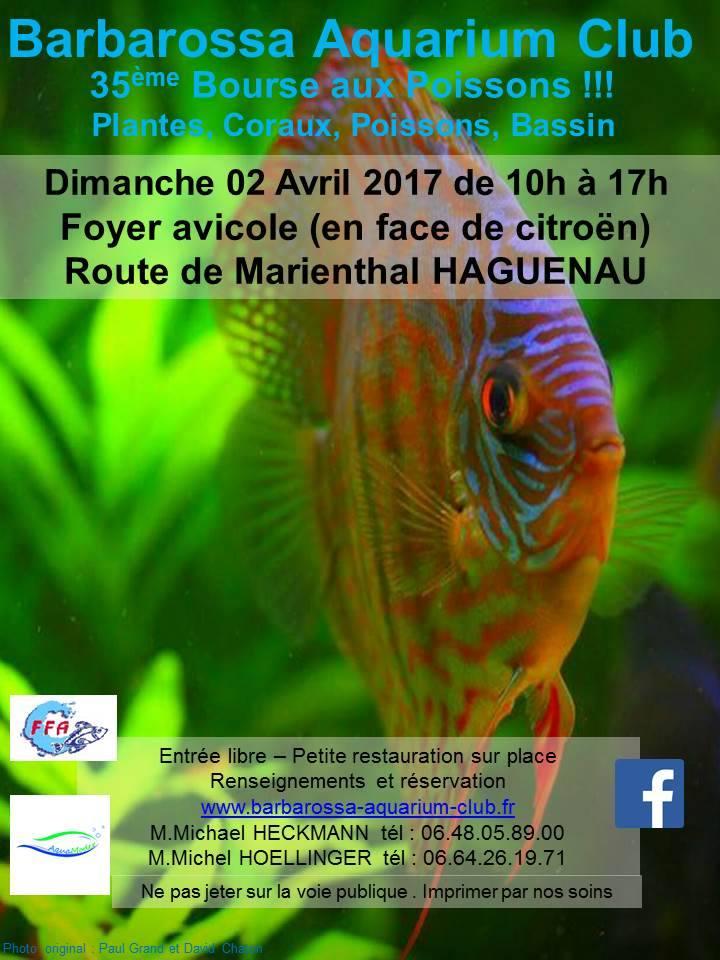 Bourse HAGUENAU (67) - 2 avril 2017 Haguen10