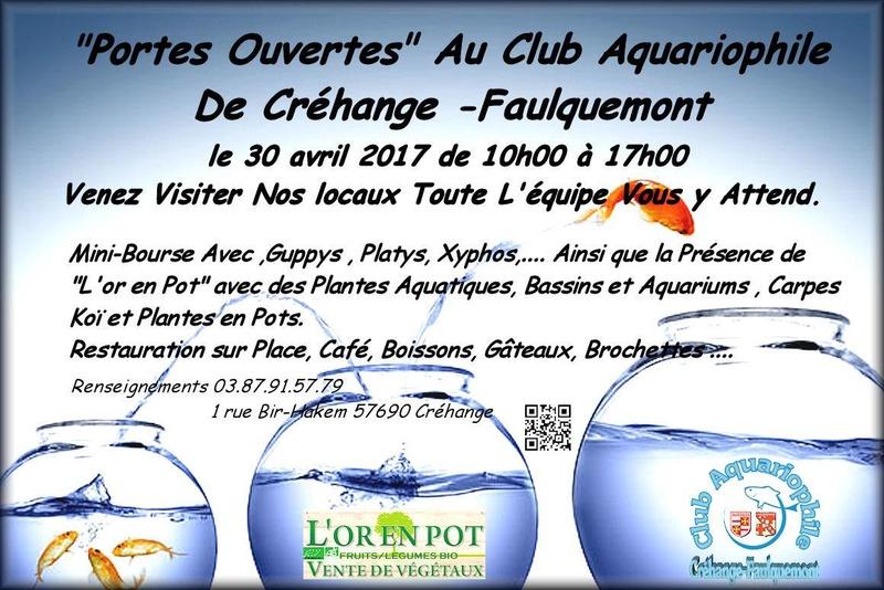 Portes Ouvertes Club de Créhange Faulquemont (57) - 30 Avril 2017 Porte_10