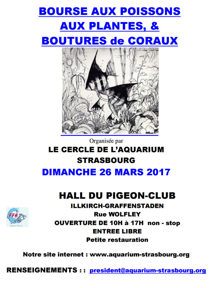 Bourse Illkirch-Graffenstaden - Strasbourg (67) - 26 mars 2017 Stras10