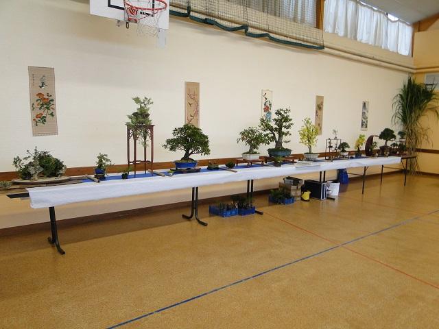 fête des plantes  00110