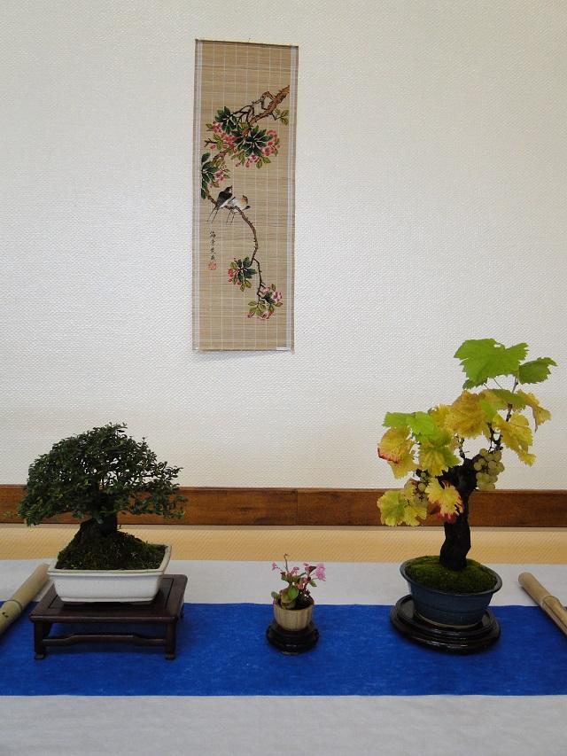 fête des plantes  00910