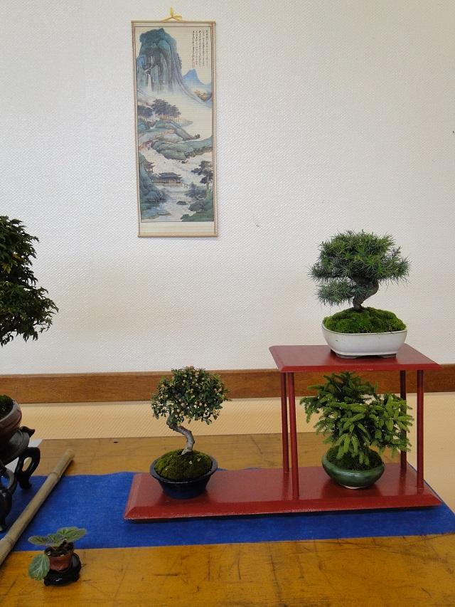 fête des plantes  01210