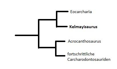 Kelmayisaurus petrolicus Kelmay10