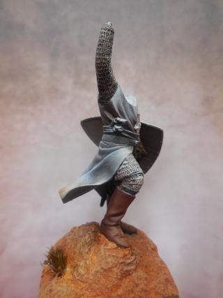 moi aussi un templier (Pegaso) Dscn0011