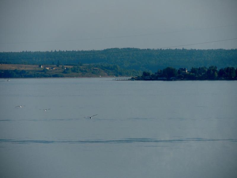 Фотографии рек и речных судов Dscn3837
