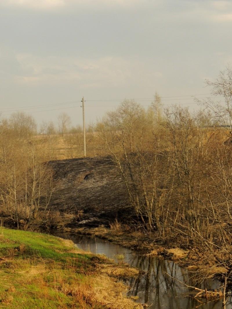 Фотографии рек и речных судов Dscn7111