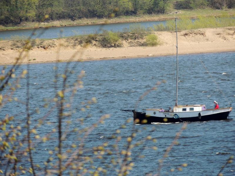Фотографии рек и речных судов Dscn7220