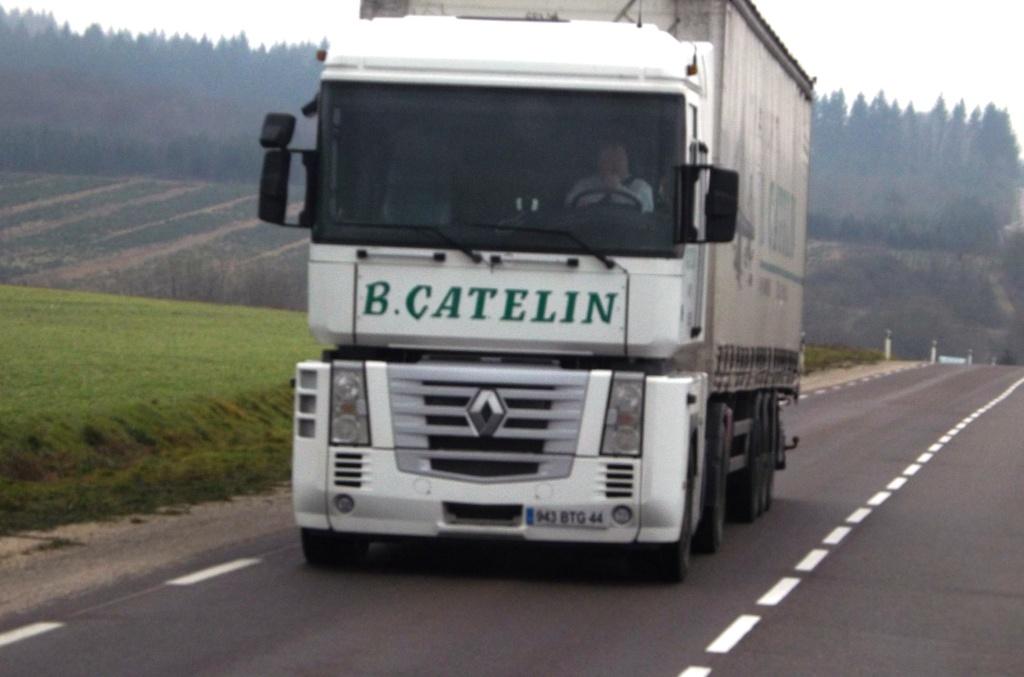 Catelin (Saint Herblon, 44) Dscf1414