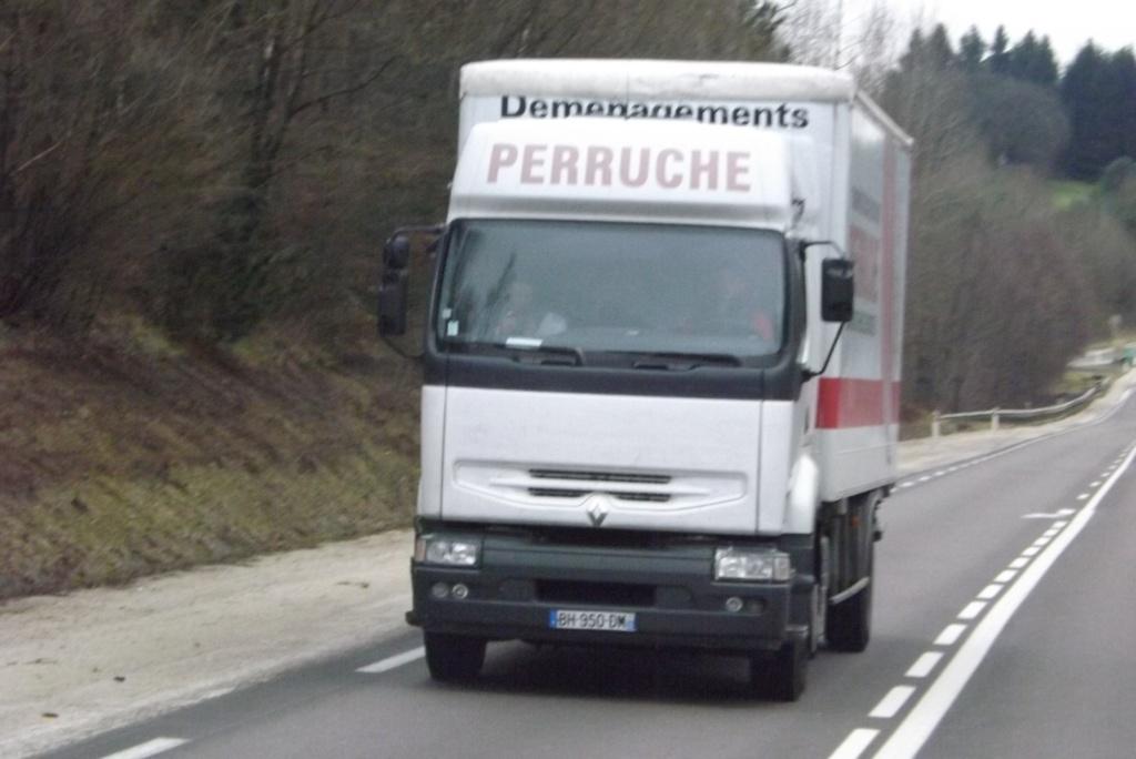 Perruche (Dijon) (21) (disparut) Dscf1544