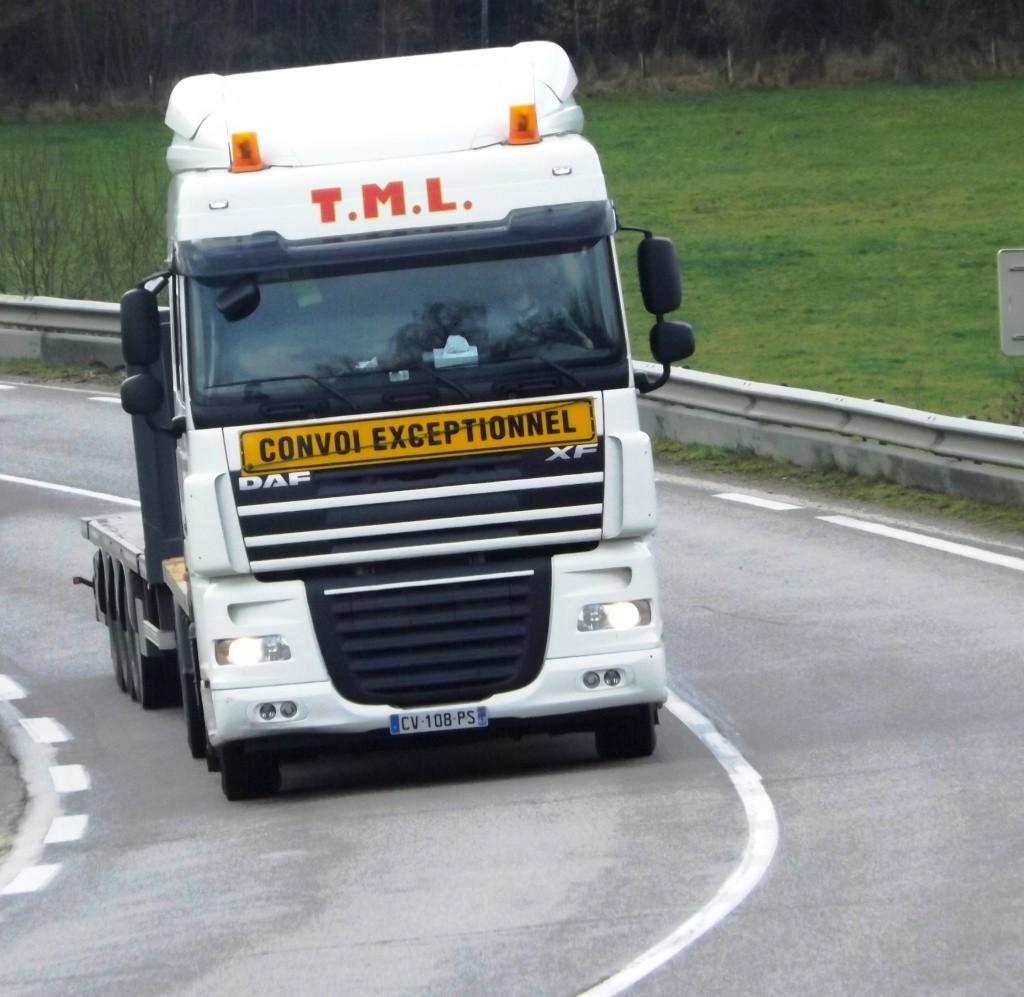 Transports T.M.L. (Saint Romain la Motte, 42) Dscf2533