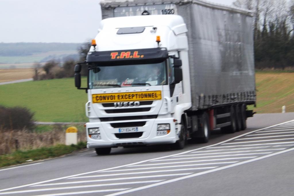 Transports T.M.L. (Saint Romain la Motte, 42) Dscf2961