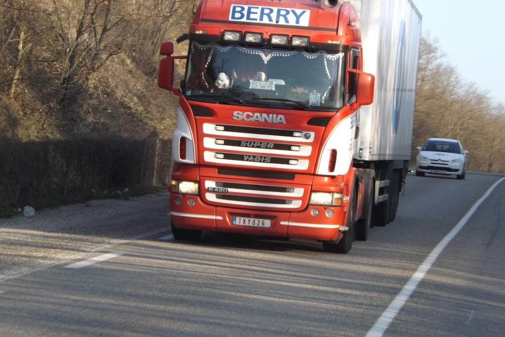 Berry (Boortmeerbeek) Dscf3223